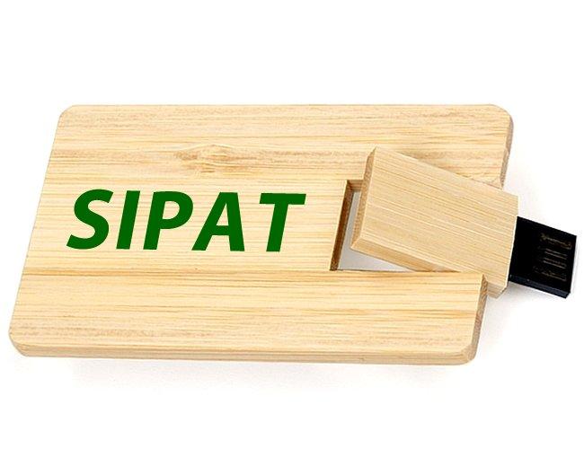 https://www.corporativobrindes.com.br/content/interfaces/cms/userfiles/produtos/pencar-madeira-personalizada-para-brindes-cipa-e-sipat-730.jpg